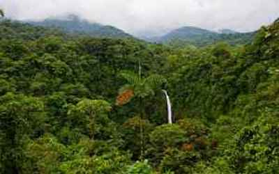 Dominica Vacation Rentals
